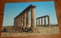 Matera. Métaponto. Temple Grec Des Tables Palatines. 1967. - Matera