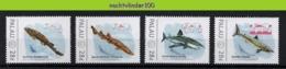 Nff154 FAUNA 'VISSEN FISH FISCHE' HAAI GREAT WHITE SHARK SMALL-SPOTTED CATSHARK HAIE MARINE LIFE PALAU 2012 PF/MNH - Marine Life