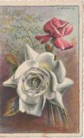 Illustrateur  : G . Laforge  , Une  Fleur  , La  Rose (  écrite  à  Briouze ) - Künstlerkarten