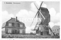 5 Herentmolen -  Meulebeke - Meulebeke