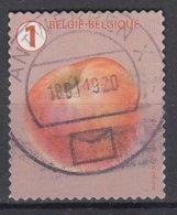 BELGIË - OPB - 2019 - Nr ? - Gest/Obl/Us - Gebruikt