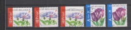 COB 3548 / 3549 Oblitération Centrale Fleurs Bleuet Tulipe - Used Stamps