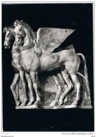 TARQUINIA (VT):  MUSEO  -  CAVALLI  ALATI  -  PER  LA  SVIZZERA  -  FOTO  -  FG - Musei