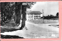 Crepy-en-Valois - Les Pormenades - L'Ecole Musée De L'Archerie Parfait état - Crepy En Valois