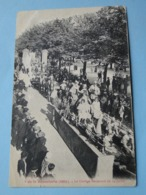 Lot De 50 Cpa TOUTES ANIMEES -- FRANCE -- Voir Les 50 Scans - Lot N° 1 - Postcards