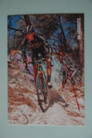CYCLISME: CYCLISTE : JIM AERNOUTS - Ciclismo