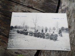 Carabiniers ,vélo, Armée Belge - Reggimenti