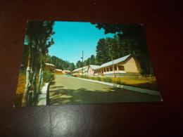 B742   Comigliatello Silano Cosenza Campeggio Militare Non Viaggiata Lievi Imperfezioni Angoli - Italy