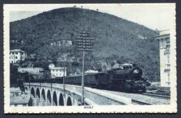 CV2936 SORI (Genova GE) Viadotto Ferroviario Con Treno In Primo Piano, FP, Non Viaggiata, Ottime Condizioni - Genova