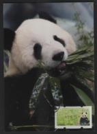 Taiwan(Formosa) Carte Maximum Card -Giant Panda ATM Label 2010 - ATM - Frama (vignette)