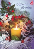 Postal Stationery - Birds - Bullfinches - Candle Lighting - Finnish Heart Association - Suomi Finland - Postage Paid - Finland
