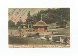 Willebroeck. - Vue Au Parc De Naeyer (1906). - Willebroek