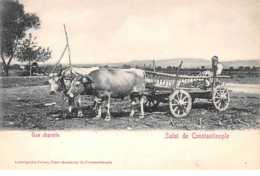 Turquie.n°58366.constantinople.salut. Une Charette - Turquie