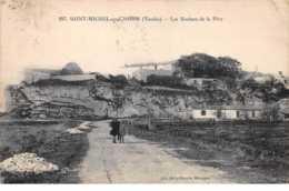 85.n°59443.saint Michel En L'herm.les Rochers De La Dive - Saint Michel En L'Herm