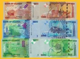 Uganda Set 1000, 2000, 5000 Shillings 2017 UNC Banknotes - Uganda