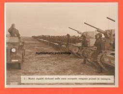Carri Armati Ansaldo Fiat L6/40 Deserto Africano  Tank Tankette II° WW African War Moto Motoecycle Bianchi - Guerre, Militaire