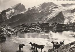 CP Des Années 50-60-La Grave- Plateau D'En Paris, Le Lac Lérié, La Meije, Le Rateau Et Le Glacier Du Mont De Lans - Frankrijk