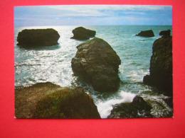 CPM SAINT HILAIRE DE RIEZ  SION SUR L'OCEAN LES PINNEAUX PAR GROS TEMPS  VOYAGEE 1979 TIMBRE FLAMME - Saint Hilaire Des Loges
