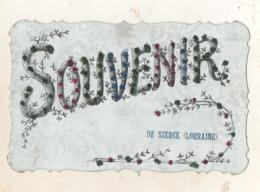 Souvenir De SIERCK    ( LORRAINE  )  Carte Pailletée - Autres Communes