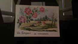 CSM - Un Bonjour De CHAMMES - France