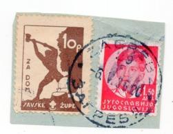 CROATIA, POSTER STAMP, ZA DOM, SAVSKA ZUPA 10p - Croatia