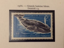 TAAF YT 22 Grande Baleine Bleue 5F Neuf Sans Charnière - Nuevos