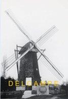 ARENDONK (Antw.) - Molen/moulin - Achtkante Houten Toremansmolen Op De Wampenberg In 1988 Na Restauratie - Arendonk