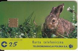 POLAND(chip) - Rabbit, TP Telecard 25 Units, Used - Konijnen