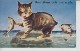 MC30. Comic Manx Cat I.O.M. - Katzen