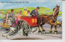 MC29. Comic Manx Cat I.O.M. - Katzen