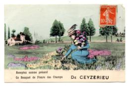 De Ceyzerieu Ce Bouquet De Fleurs Des Champs - Otros Municipios
