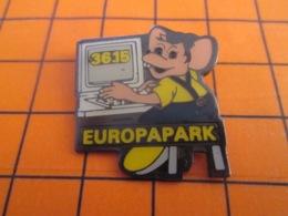 1319 Pin's Pins : BEAU ET RARE : Thème INFORMATIQUE / 3615 EUROPA PARK  SOURIS DEVANT UN ORDINATEUR - Computers