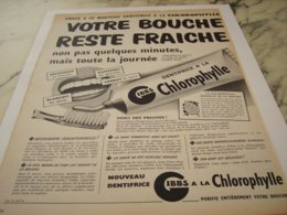 ANCIENNE PUBLICITE DENTIFRICE A LA CHLOROPHYLLE GIBBS  1952 - Parfum & Cosmetica
