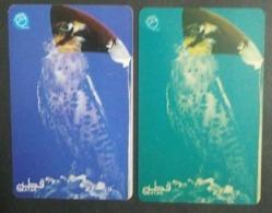Qatar Telephone Card Old Falcon - Qatar