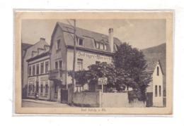 5407 BOPPARD - BAD SALZIG, Salziger Winzerhaus, 1929 - Boppard
