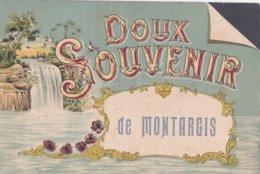 Montargis : Doux Souvenir De Montargis - Montargis