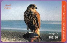 Telecarte °_ Emirats.UAE-oiseau-Falcon-Dhs30- R/V 4797 - Emirati Arabi Uniti