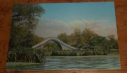 Pont Sur Un étang. 1966 - China