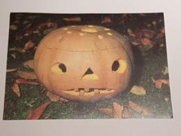 Kürbisgeist (gelaufen ,  1998); H40 - Halloween