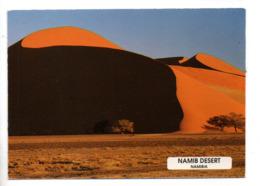 NAMIBIE . NAMIB DESERT - Réf. N°23218 - - Namibia