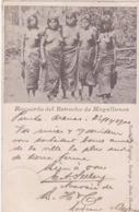 CHILI AMERIQUERECUERDO DEL ESTRECHO DE MAGALLANES 1901 TRES ANIMÉES CPA BON ÉTAT - Chili