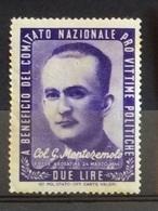 PRO VITTIME POLITICHE COL.G.MONTEZZEMOLO  L. 2 - Francobolli