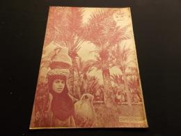 Magazine Circa 1950 Iran Caricatures, Propagande, Illustrations, Religion, Politique,satirique Perse, ECRIT EN PERSE - Algemene Informatie