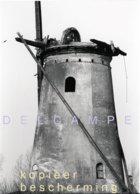 BERGEN OP ZOOM - STEENBERGEN (N.Br.) - Molen/moulin - Zeldzame Foto Van De Verdwenen Kladse Molen In Verval - Plaatsen