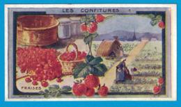 IMAGE TEINTURE LA CAYOLAISE  CANTRELLE & Cie Fab Chim VERSAILLES / VERGER FRERES & Cie PARIS / LES CONFITURES FRAISES - Otros