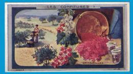 IMAGE TEINTURE LA CAYOLAISE  CANTRELLE & Cie Fab Chim VERSAILLES / VERGER FRERES & Cie PARIS / LES CONFITURES GROSEILLES - Otros