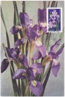 """CM: FRANCE: FLORE: """"Dites-le Avec Des Fleurs"""" L'IRIS, Symbolise LA TENDRESSE  1er Jour 10.02.2012 N° 671 - 2010-..."""