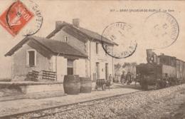 Saint Sauveur De Nuaillé La Gare - France
