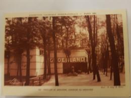 CPA PARIS EXPOSITION COLONIALE 1931 PAVILLON DU DANEMARK CONSACRE AU GROENLAND - Exhibitions