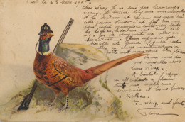 Chasse Au Faisan . Humour . Carte Redessinée . Faisan Chasseur - Hunting